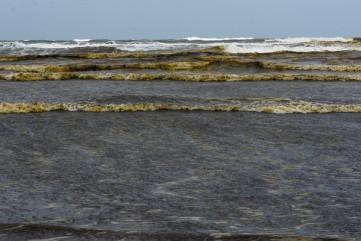 Nước biển ở Quảng Ngãi chuyển đen, nổi bọt bất thường