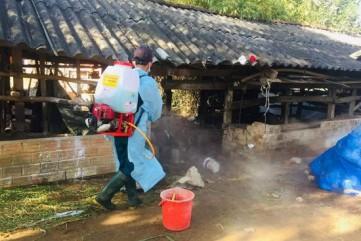 Quảng Ngãi: Dịch lở mồm long móng xuất hiện ở 6 huyện, thành phố