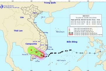 Bão số 9 áp sát đất liền, Quảng Ngãi có mưa to