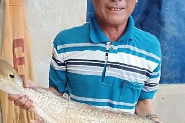 """Ngư dân Bình Sơn """"săn"""" được cá sủ vàng quý hiếm"""